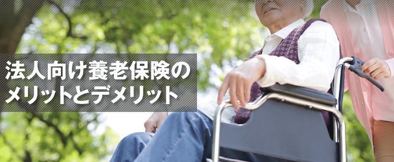 法人向け養老保険